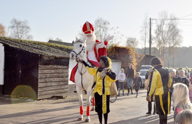 Weihnachtsbräuche Belgien: Sint Niklaas reitet auf seinem Schimmel von Haus zu Haus
